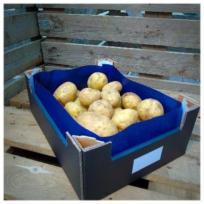 5 kg aardappelen